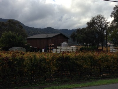 NapaPointWinery-400x300