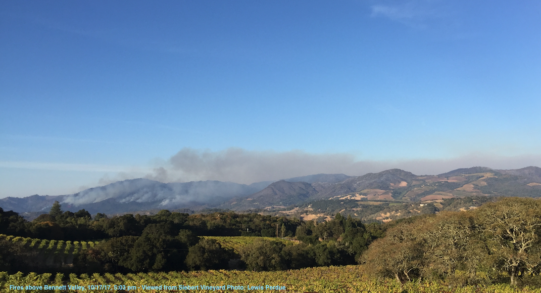 Fires above Bennett Valley, 10/17/17, 5:03 pm - Viewed from Siebert Vineyard Photo: Lewis Perdue - Right-click photo to view a larger image